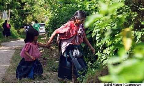 Defensa territorial de las mujeres tzotziles de Aldama