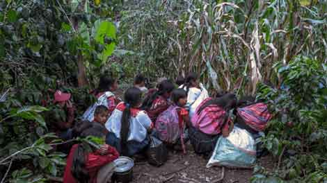 Situación de niñez en Chiapas